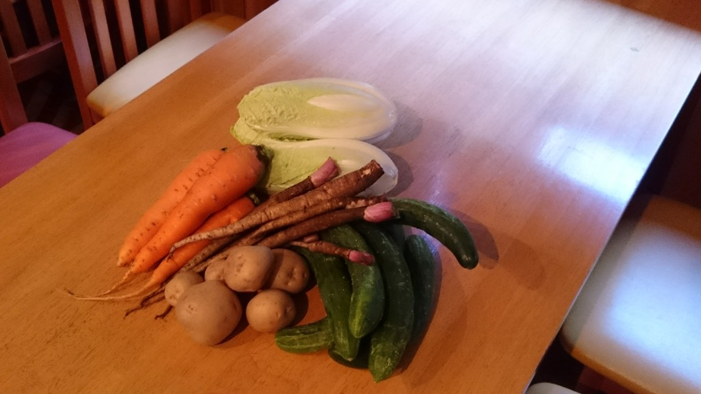 今週のお野菜は?