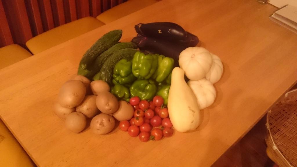 今週のお野菜届きました