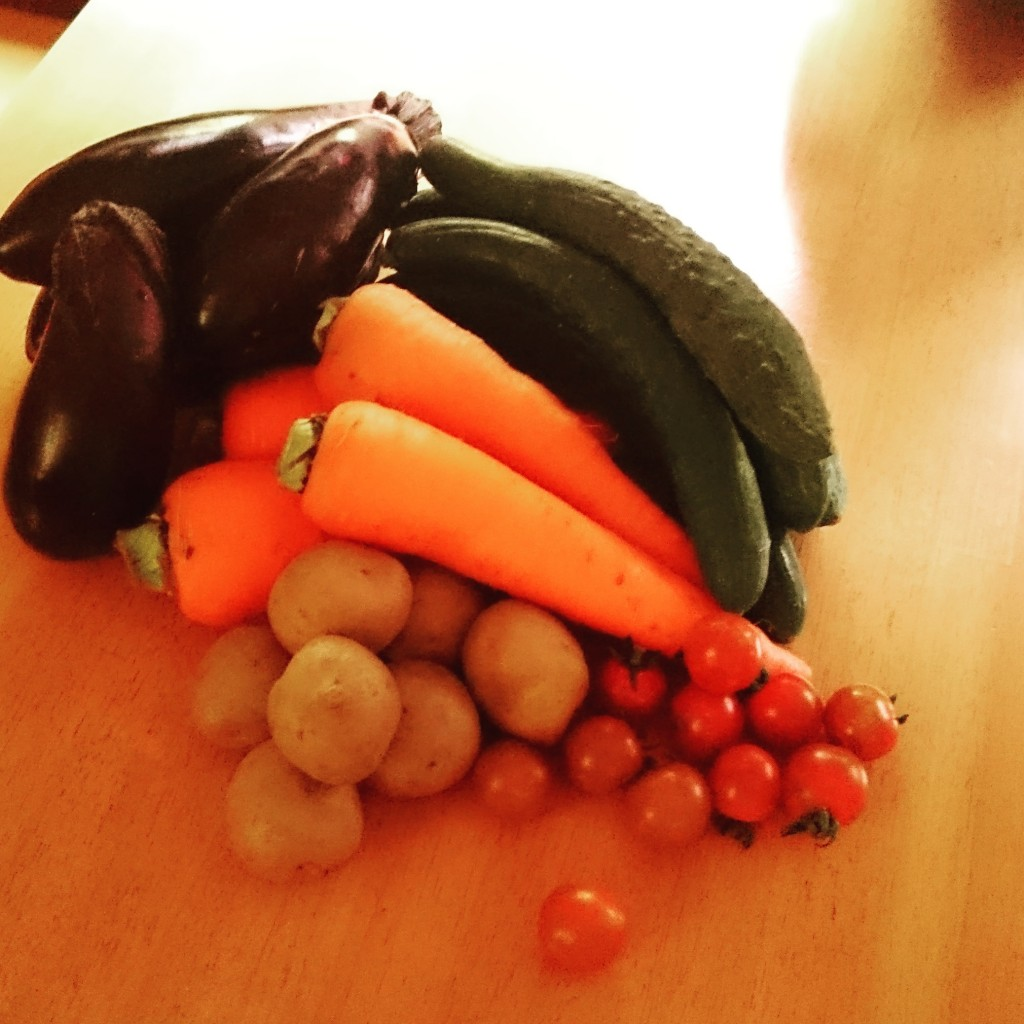 今週の無農薬・無肥料お野菜