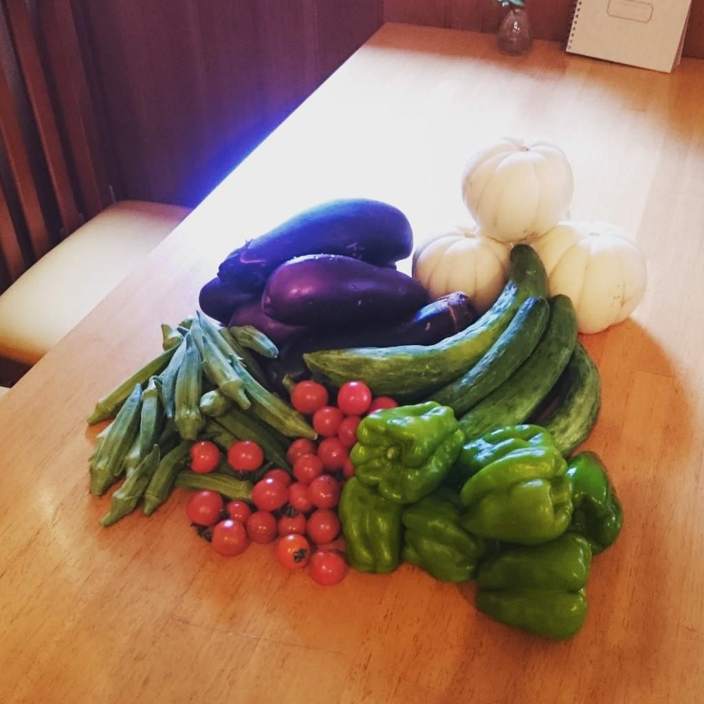 今週のお野菜です
