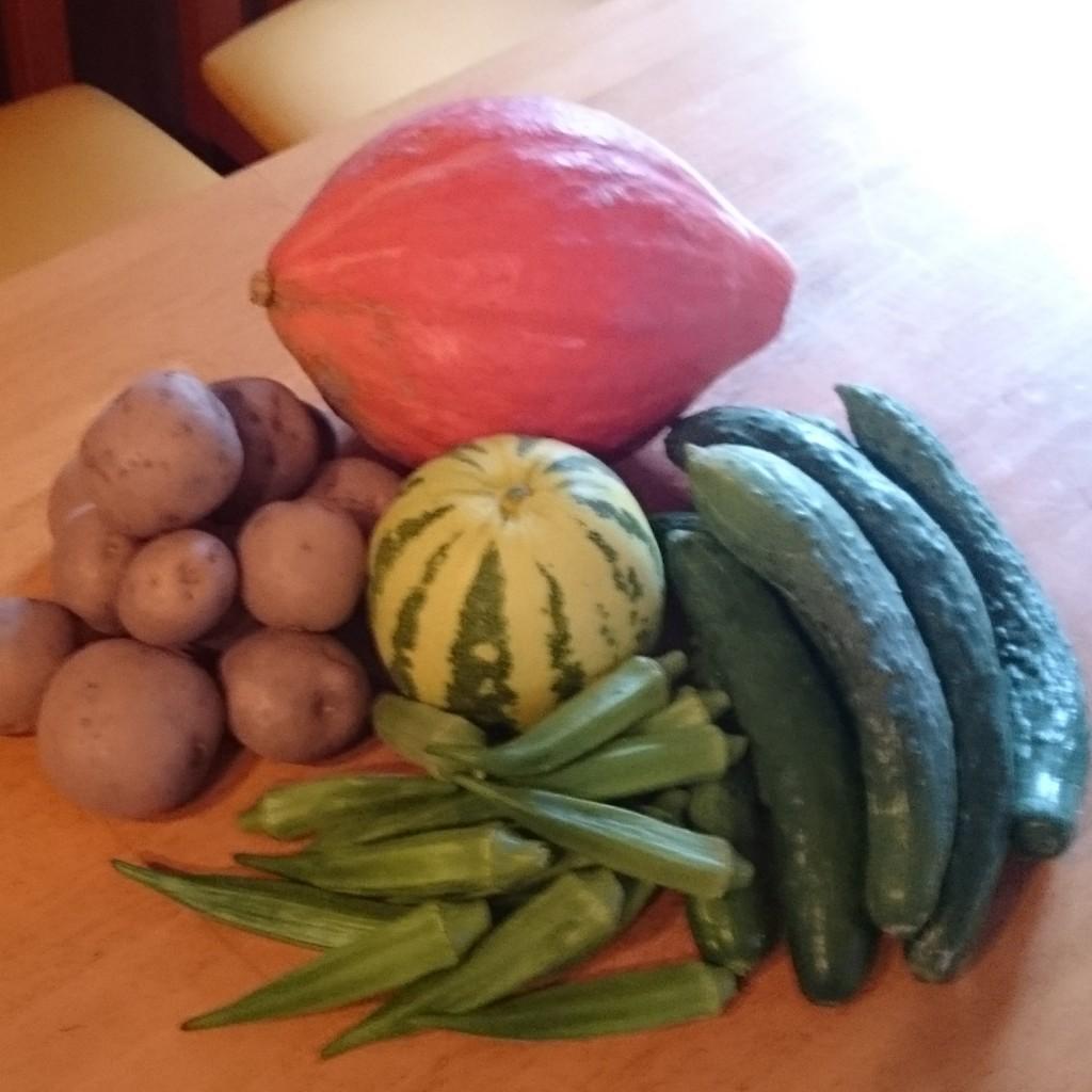 今週のお野菜