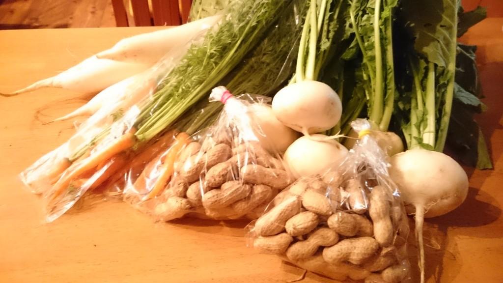 今週の新鮮お野菜