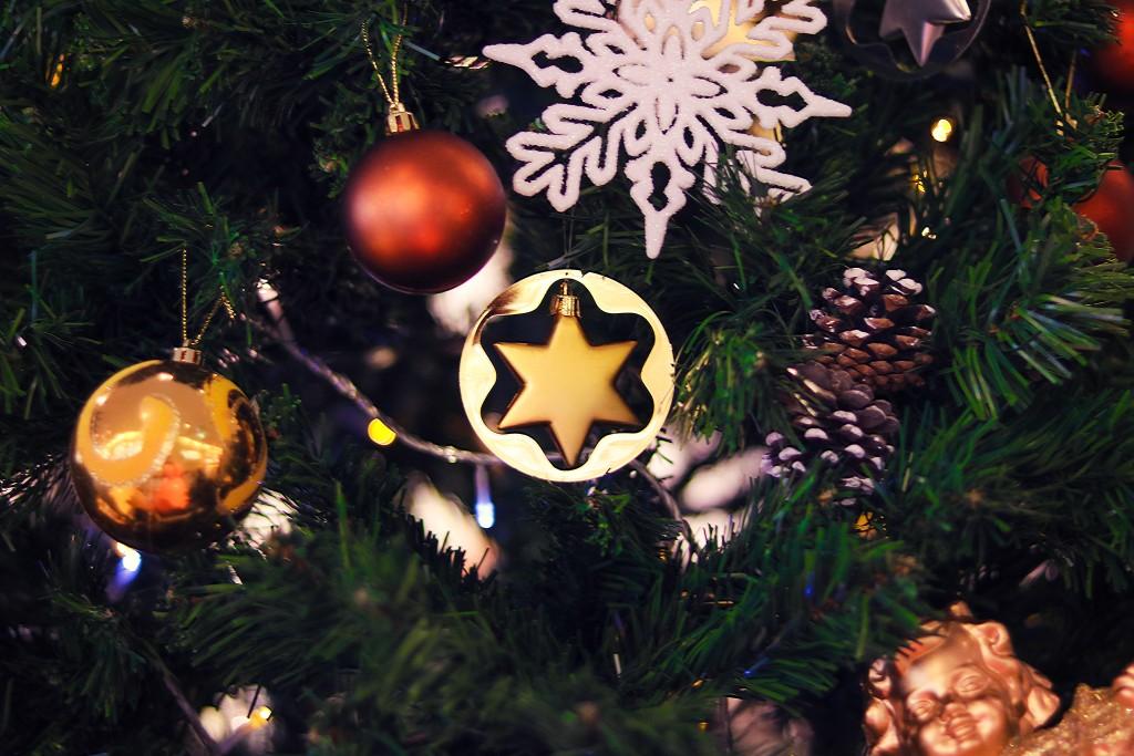 カナダのあったかクリスマス