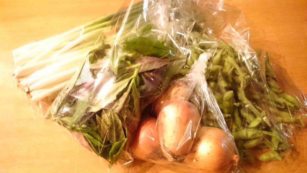 【無農薬無肥料】みのり農縁さんのお野菜届きました